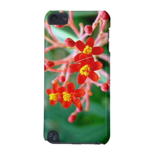 Pretty Small Red buds and flowers iPod Touch 5G Cases