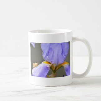 Pretty Spring Iris Flower Mug