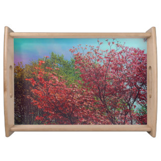 Pretty Spring Treetops Landscape Serving Tray