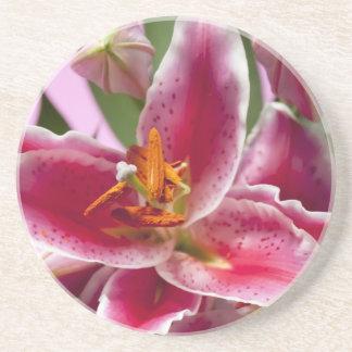 Pretty Stargazer Lilies Drink Coasters