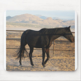 Pretty Thoroughbred Horse Mouse Pad