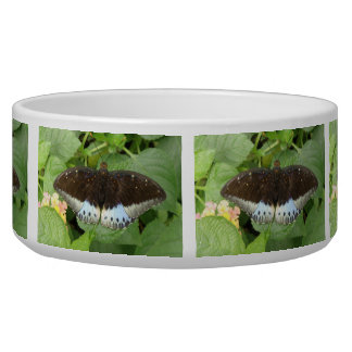 Pretty Tropical Butterfly Dog Bowl