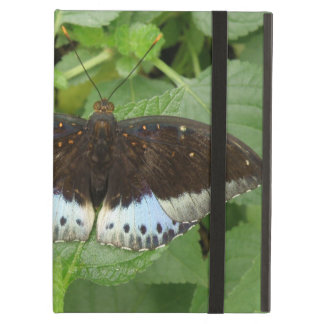 Pretty Tropical Butterfly iPad Case
