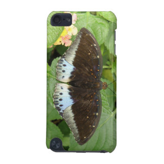 Pretty Tropical Butterfly iPod Case
