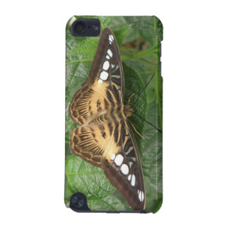 Pretty Tropical Clipper Butterfly  iPod Touch 5G Case