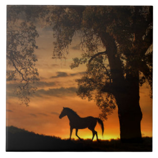 Pretty Trotting Horse in the Sunrise Tile