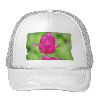 Pretty Tulips  Baseball Hat