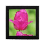 Pretty Tulips Gift Box