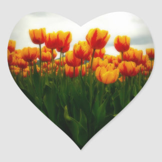 Pretty Tulips in Flower Field Heart Sticker