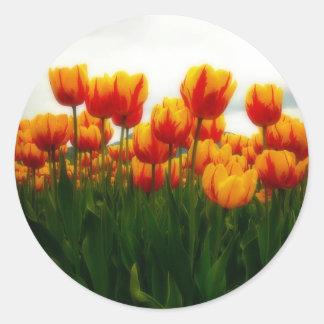 Pretty Tulips in Flower Field Round Sticker