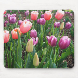 Pretty Tulips Mouse Pad