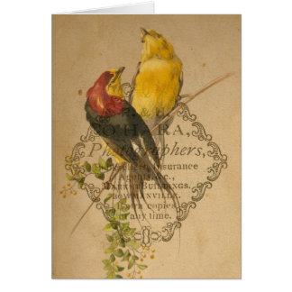 Pretty Vintage Birds Cards