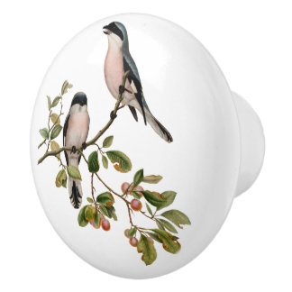 Pretty Vintage Birds In Berry Tree Ceramic Knob