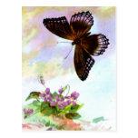 Pretty Vintage Butterfly Postcard