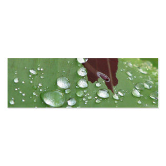 Pretty Wet Leaf Bookmark Business Card Template