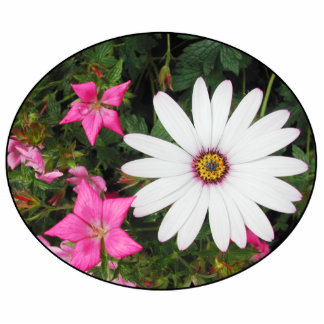 Pretty White and pink flowers. Oval. Acrylic Cut Out