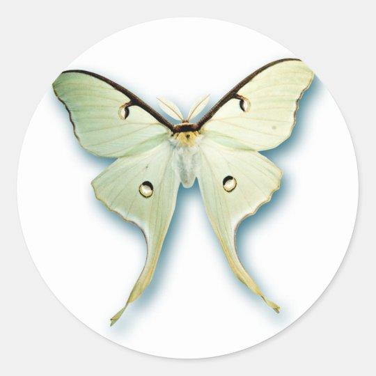 Pretty White Butterfly Design Round Sticker