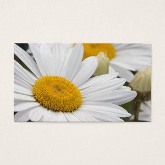 Pretty White Daisies Business Card