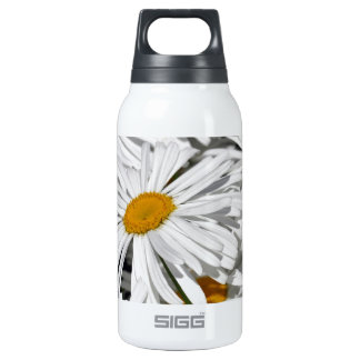 Pretty white daisy flower print insulated water bottle