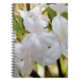 Pretty white flowers notebook