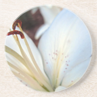 Pretty White Lily Drink Coaster