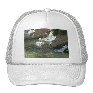 Pretty White Swan Cap