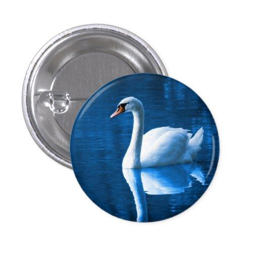 Pretty white swan floating on a blue lake button
