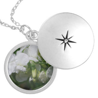 Pretty White Sweet Pea Flowers Locket Necklace