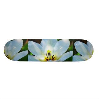 Pretty White Tulips Skateboards