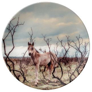 Pretty Wild Pony plate