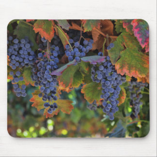 Pretty Wine Country Mousepad
