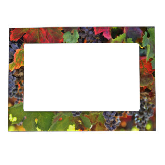 Pretty Wine Country Themed Magnetic Frame