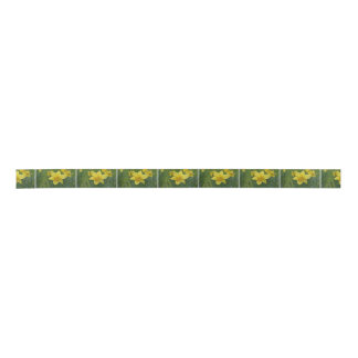 Pretty Yellow Daffodil Satin Ribbon
