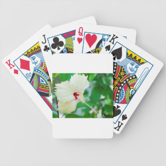 Pretty yellow hibiscus flower deck of cards