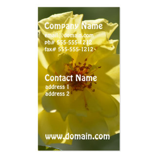 Pretty Yellow Rose Double-Sided Standard Business Cards (Pack Of 100)