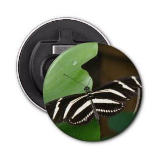 Pretty Zebra Longwing Butterfly Bottle Opener
