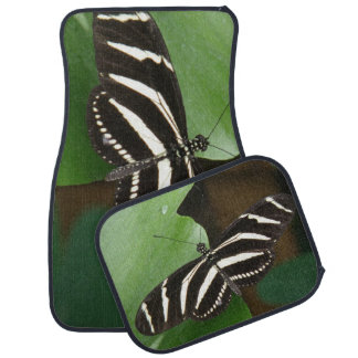 Pretty Zebra Longwing Butterfly Car Mat Set