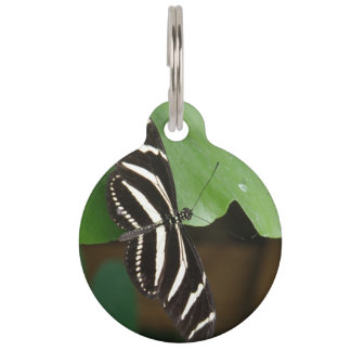 Pretty Zebra Longwing Butterfly Custom Dog Tag
