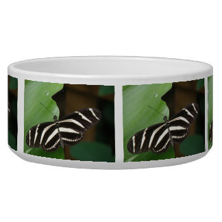 Pretty Zebra Longwing Butterfly Dog Bowl