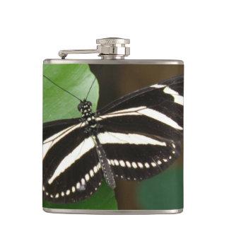 Pretty Zebra Longwing Butterfly Flask