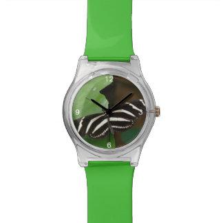 Pretty Zebra Longwing Butterfly Watch