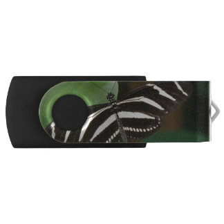 Pretty Zebra Longwing USB Drive