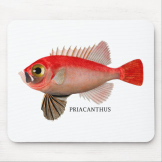 PRIACANTHUS MOUSE MAT