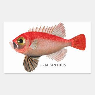 PRIACANTHUS STICKER