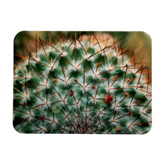 """""""Pricked by Summer"""" Rectangular Photo Magnet"""
