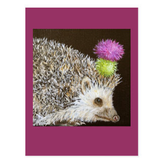 prickle the hedgehog w party thistle hat postcard
