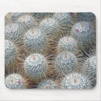 Prickly cactus plants mousepad