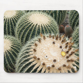 Prickly Pad Mouse Pad