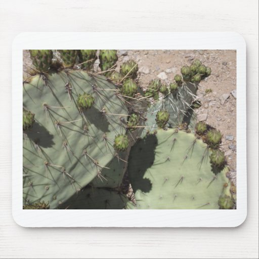 Prickly Pear Buds Mousepad
