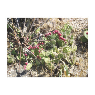 Prickly Pear Cactus and Old Wagon Wheel Canvas Prints